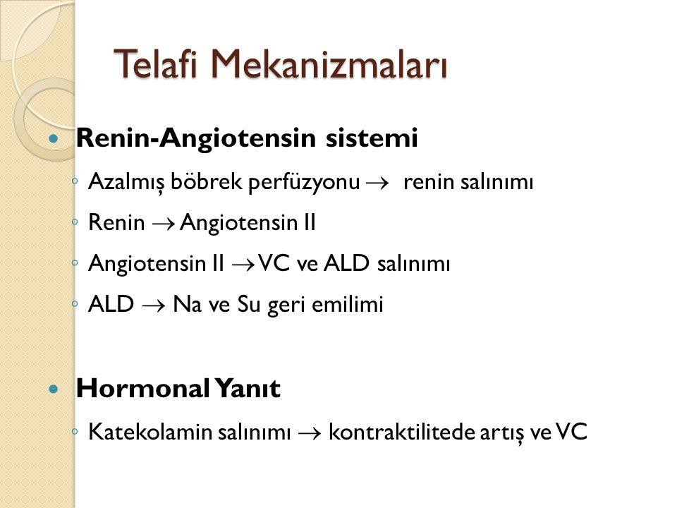 Telafi Mekanizmaları Renin-Angiotensin sistemi Hormonal Yanıt