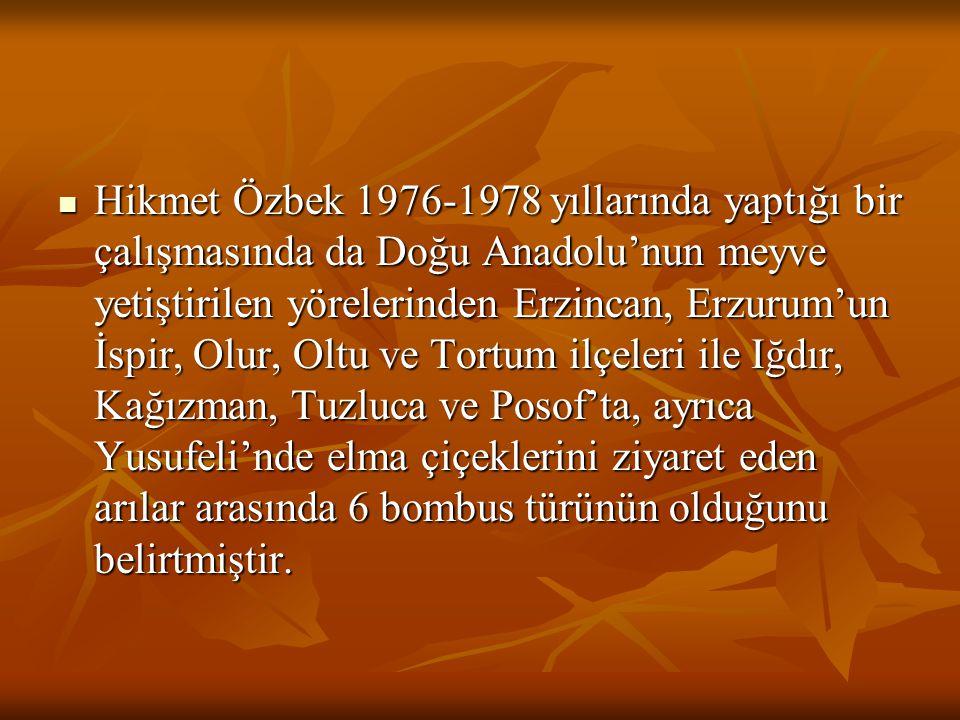 Hikmet Özbek 1976-1978 yıllarında yaptığı bir çalışmasında da Doğu Anadolu'nun meyve yetiştirilen yörelerinden Erzincan, Erzurum'un İspir, Olur, Oltu ve Tortum ilçeleri ile Iğdır, Kağızman, Tuzluca ve Posof'ta, ayrıca Yusufeli'nde elma çiçeklerini ziyaret eden arılar arasında 6 bombus türünün olduğunu belirtmiştir.