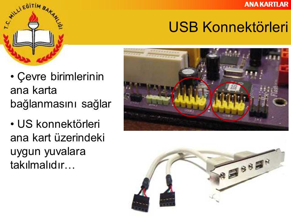USB Konnektörleri Çevre birimlerinin ana karta bağlanmasını sağlar