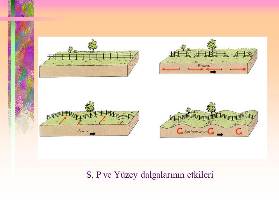S, P ve Yüzey dalgalarının etkileri