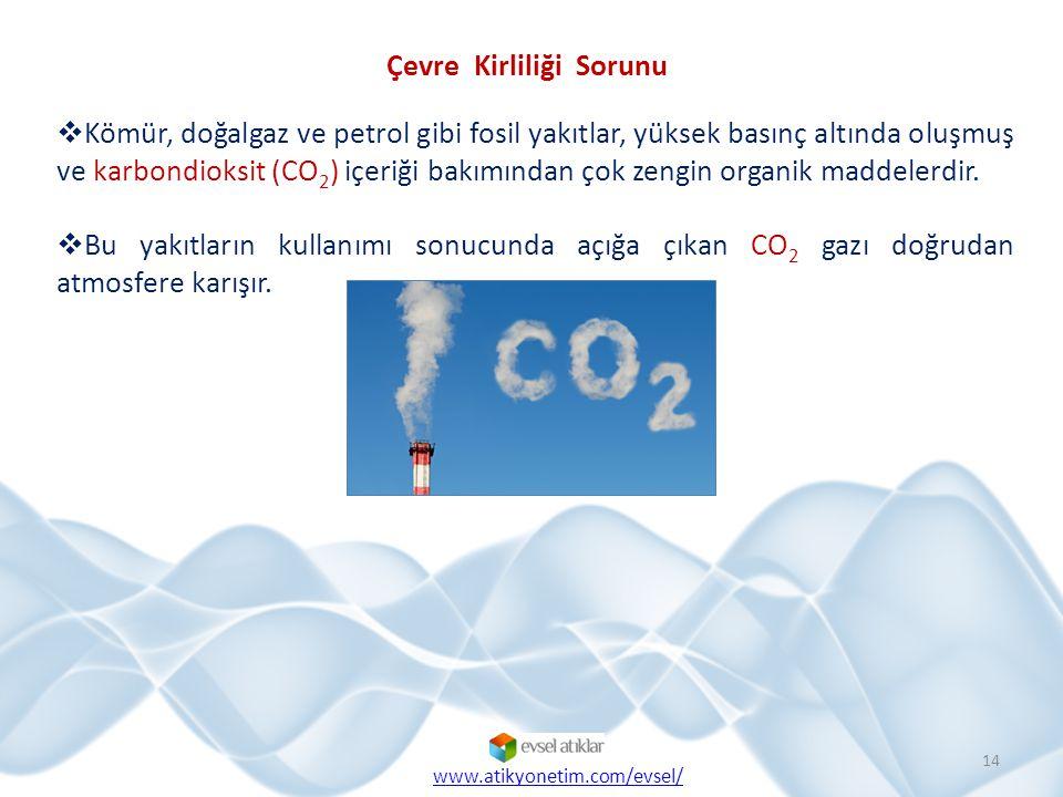 Çevre Kirliliği Sorunu