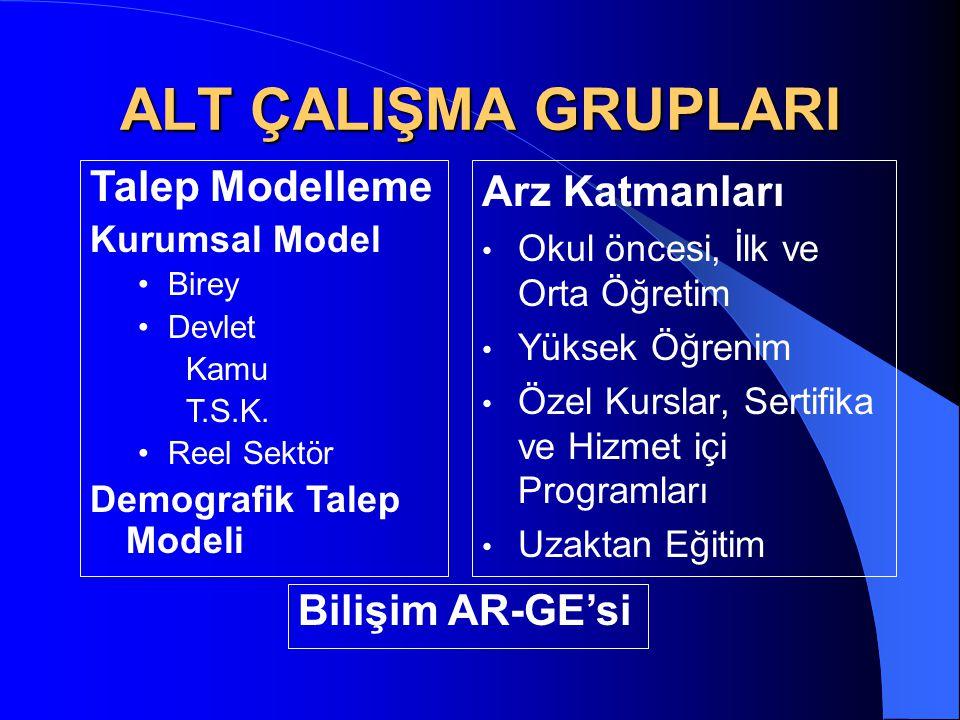 ALT ÇALIŞMA GRUPLARI Talep Modelleme Arz Katmanları Bilişim AR-GE'si
