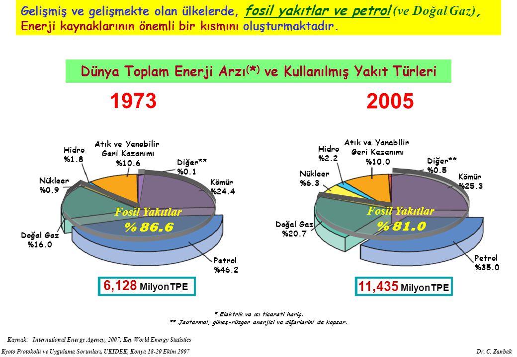 1973 2005 Dünya Toplam Enerji Arzı(*) ve Kullanılmış Yakıt Türleri