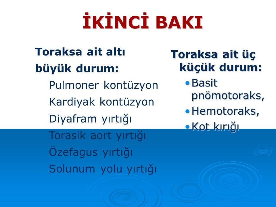 İKİNCİ BAKI Toraksa ait altı büyük durum: Toraksa ait üç küçük durum: