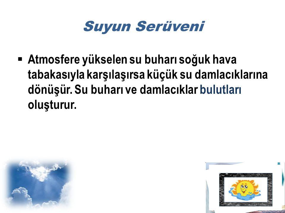 Suyun Serüveni