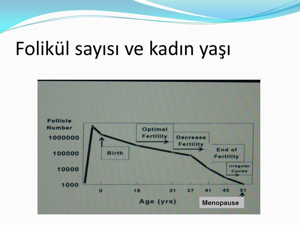 Folikül sayısı ve kadın yaşı