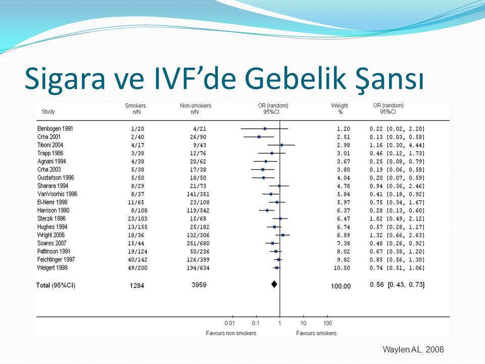 Sigara ve IVF'de Gebelik Şansı