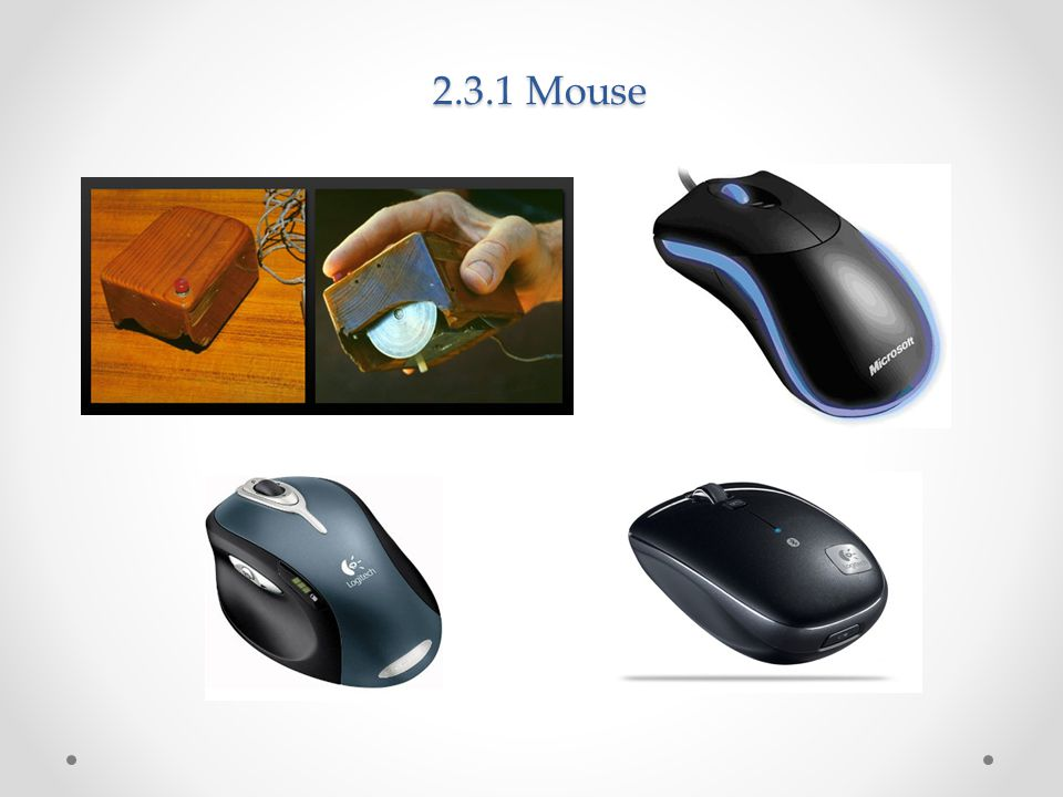 2.3.1 Mouse