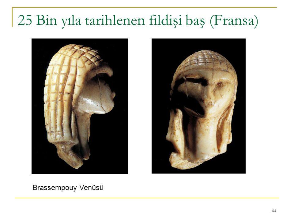 25 Bin yıla tarihlenen fildişi baş (Fransa)