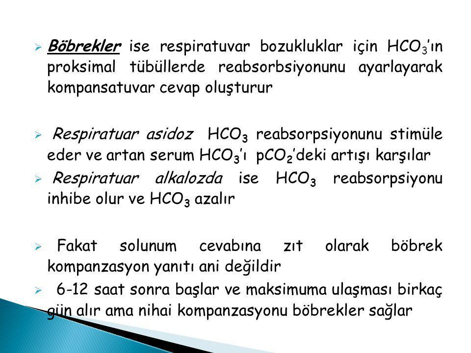 Böbrekler ise respiratuvar bozukluklar için HCO3'ın proksimal tübüllerde reabsorbsiyonunu ayarlayarak kompansatuvar cevap oluşturur