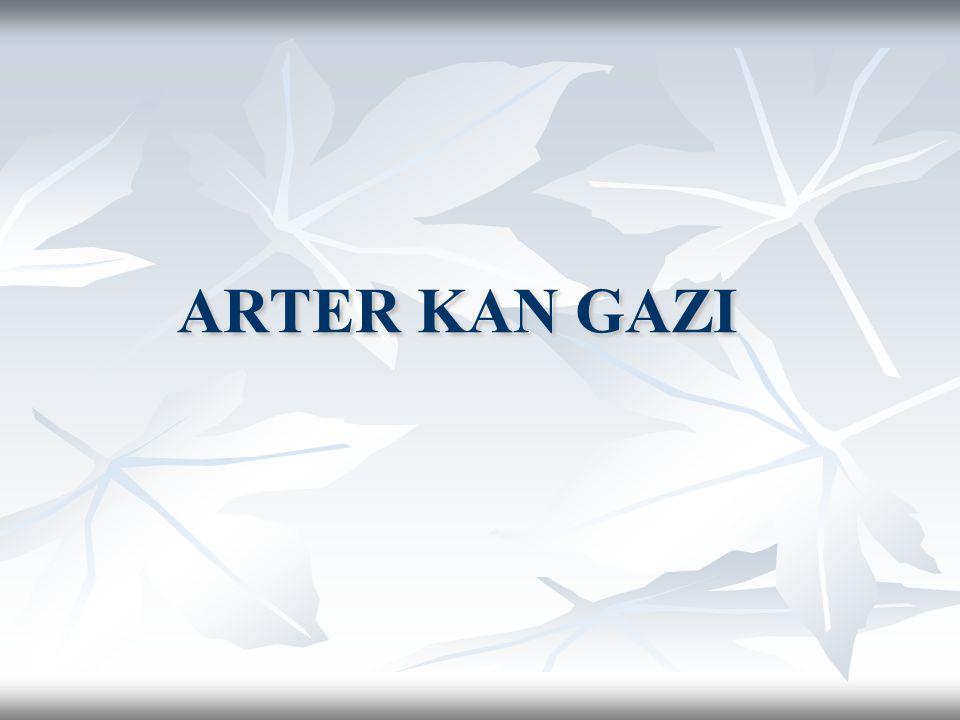 ARTER KAN GAZI