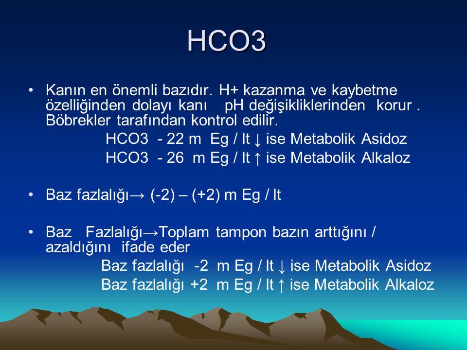 HCO3 Kanın en önemli bazıdır. H+ kazanma ve kaybetme özelliğinden dolayı kanı pH değişikliklerinden korur . Böbrekler tarafından kontrol edilir.