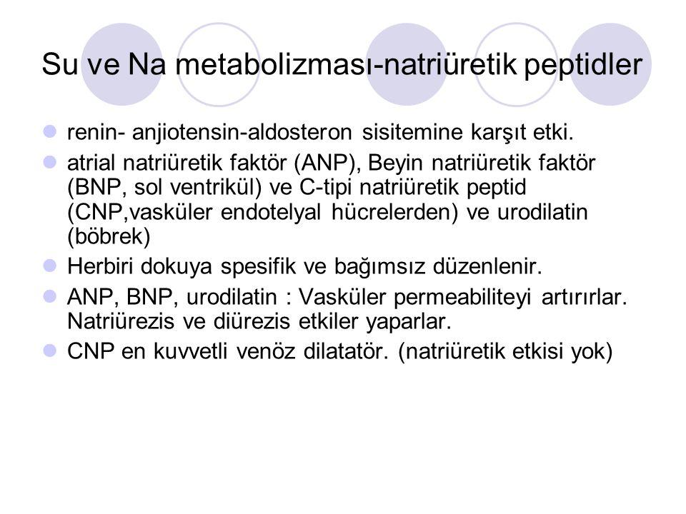 Su ve Na metabolizması-natriüretik peptidler