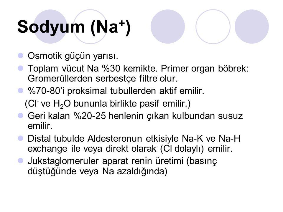 Sodyum (Na+) Osmotik güçün yarısı.