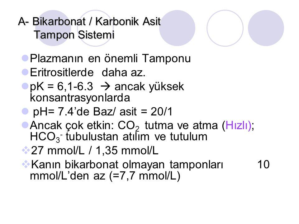 A- Bikarbonat / Karbonik Asit Tampon Sistemi