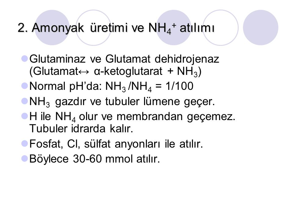 2. Amonyak üretimi ve NH4+ atılımı