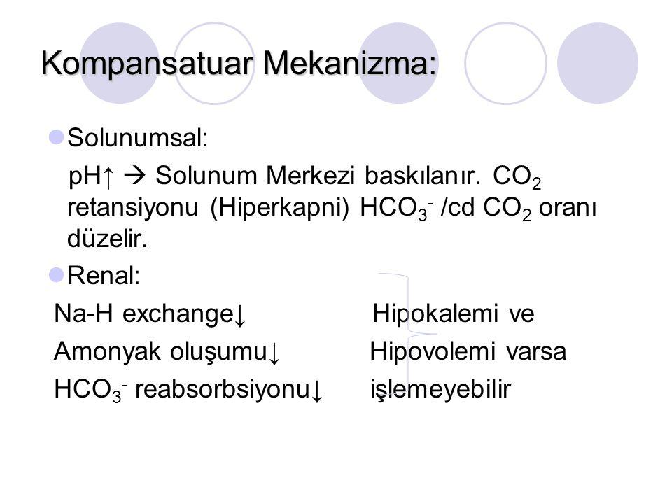 Kompansatuar Mekanizma: