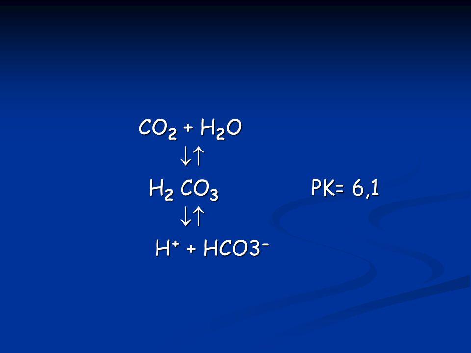 CO2 + H2O  H2 CO3 PK= 6,1 H+ + HCO3-