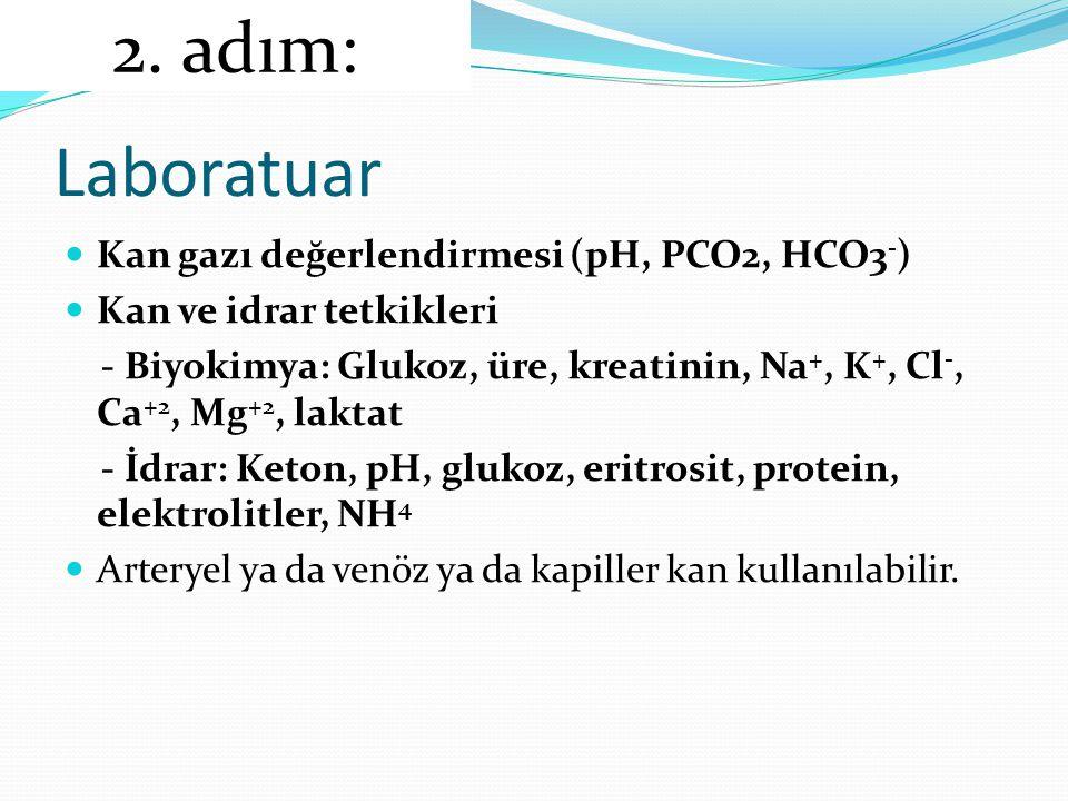 Laboratuar 2. adım: Kan gazı değerlendirmesi (pH, PCO2, HCO3-)