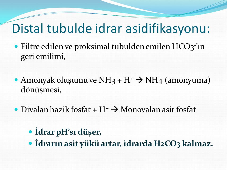 Distal tubulde idrar asidifikasyonu: