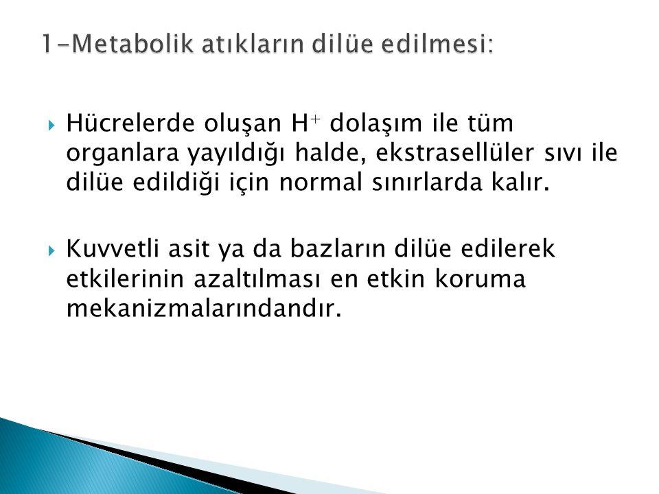 1-Metabolik atıkların dilüe edilmesi: