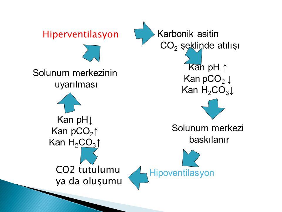 Hiperventilasyon CO2 tutulumu ya da oluşumu