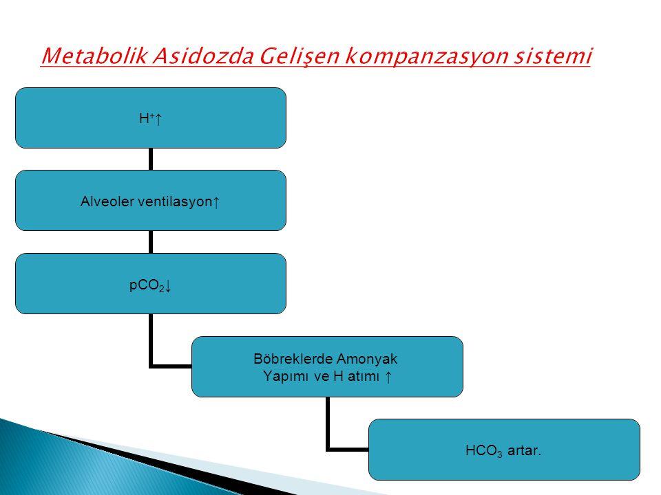 Metabolik Asidozda Gelişen kompanzasyon sistemi