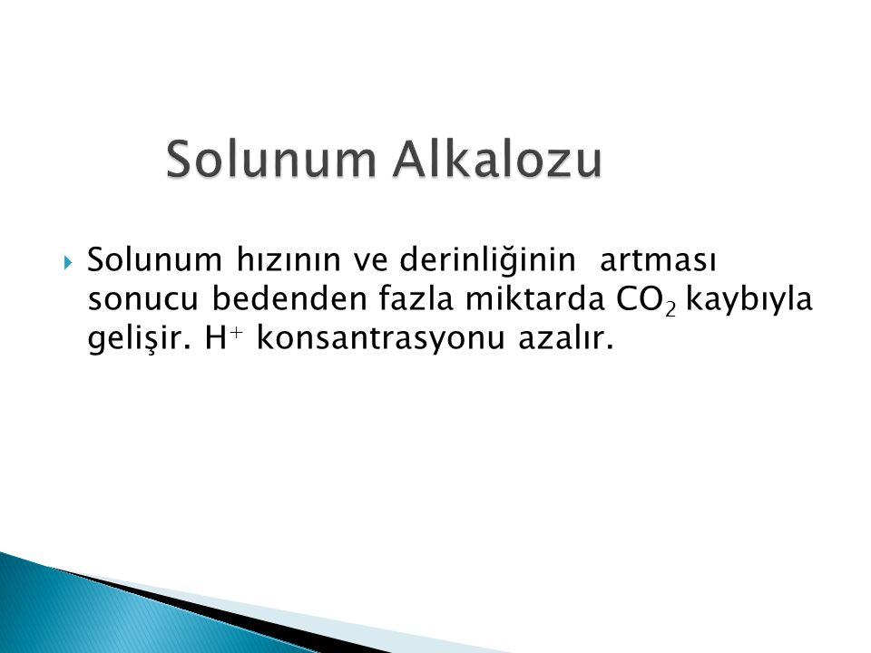 Solunum Alkalozu Solunum hızının ve derinliğinin artması sonucu bedenden fazla miktarda CO2 kaybıyla gelişir.