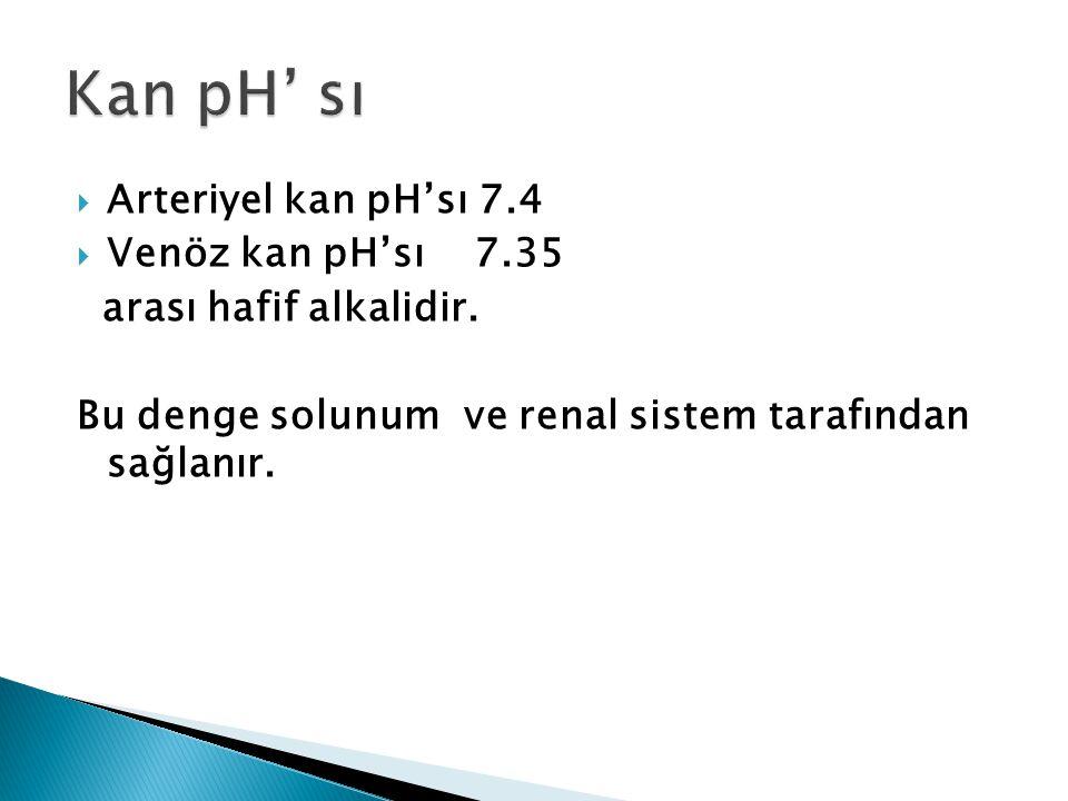 Kan pH' sı Arteriyel kan pH'sı 7.4 Venöz kan pH'sı 7.35