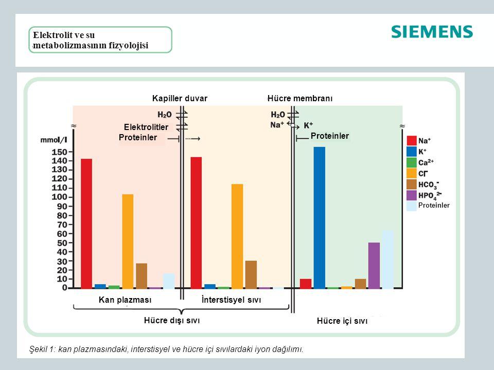 Elektrolit ve su metabolizmasının fizyolojisi