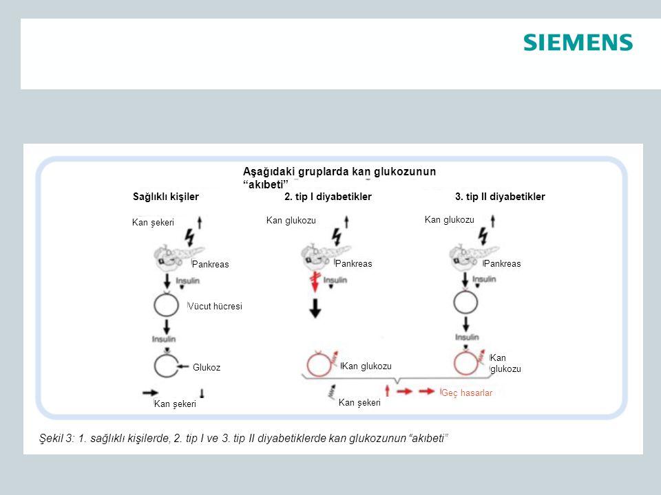 Aşağıdaki gruplarda kan glukozunun akıbeti