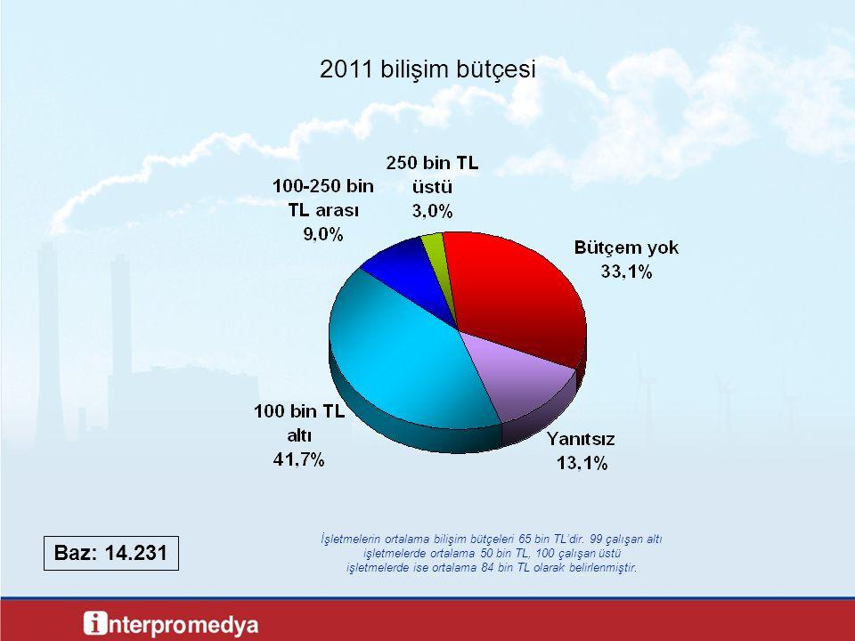 2011 bilişim bütçesi