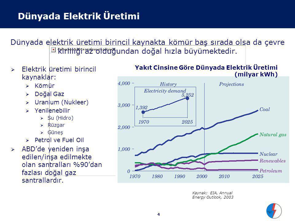 Elektrik Santral Ekonomisi