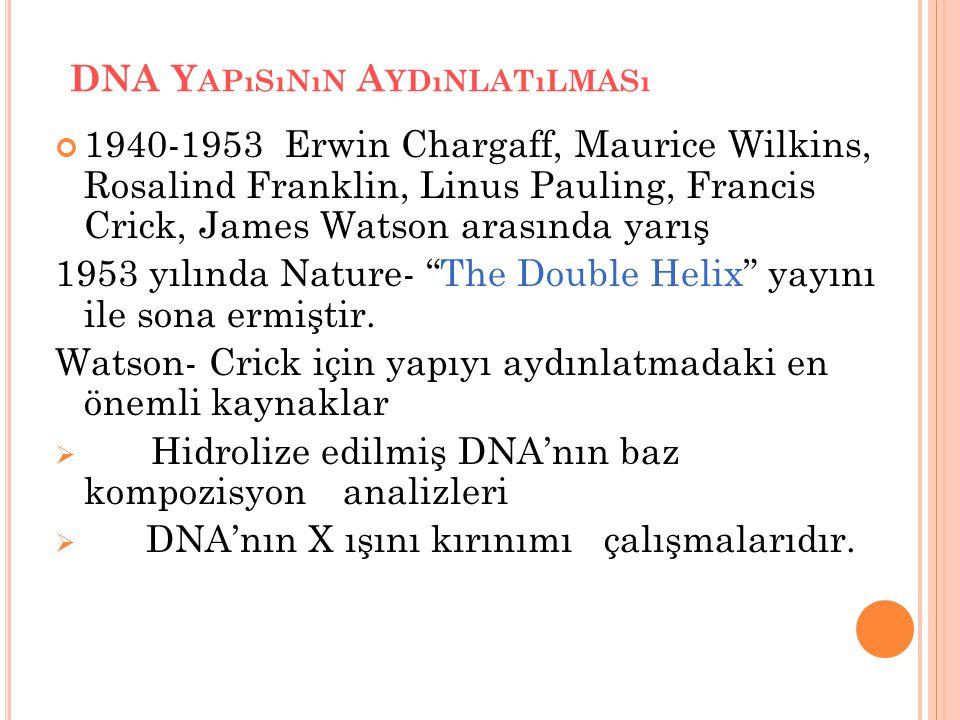 DNA Yapısının Aydınlatılması
