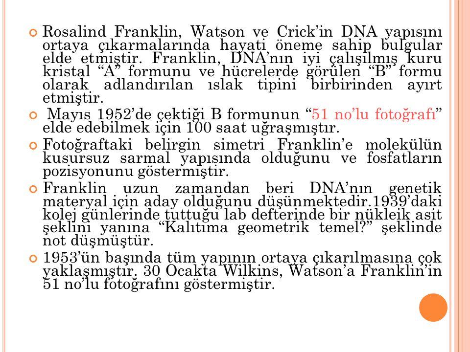Rosalind Franklin, Watson ve Crick'in DNA yapısını ortaya çıkarmalarında hayati öneme sahip bulgular elde etmiştir. Franklin, DNA'nın iyi çalışılmış kuru kristal A formunu ve hücrelerde görülen B formu olarak adlandırılan ıslak tipini birbirinden ayırt etmiştir.