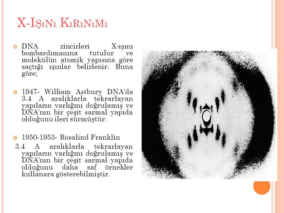 X-Işını Kırınımı DNA zincirleri X-ışını bombardımanına tutulur ve molekülün atomik yapısına göre saçtığı ışınlar belirlenir. Buna göre;