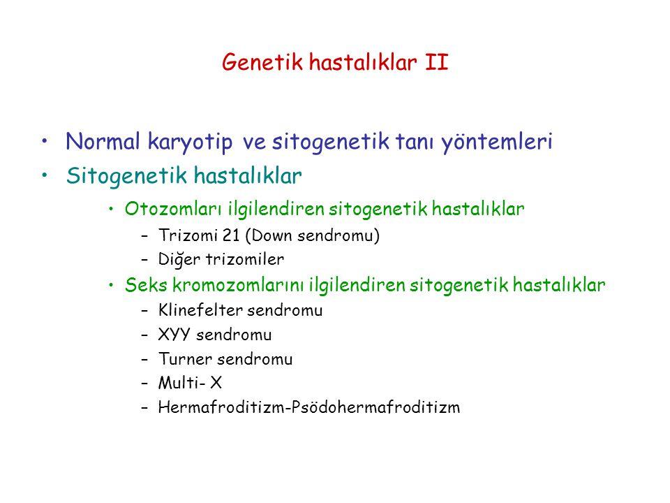 Genetik hastalıklar II
