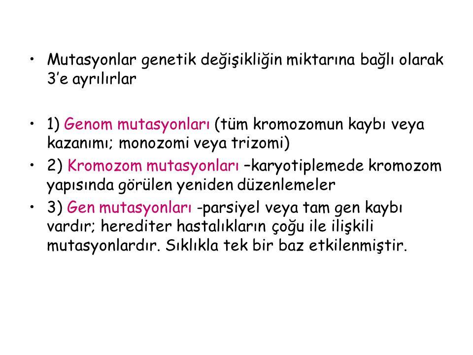 Mutasyonlar genetik değişikliğin miktarına bağlı olarak 3'e ayrılırlar