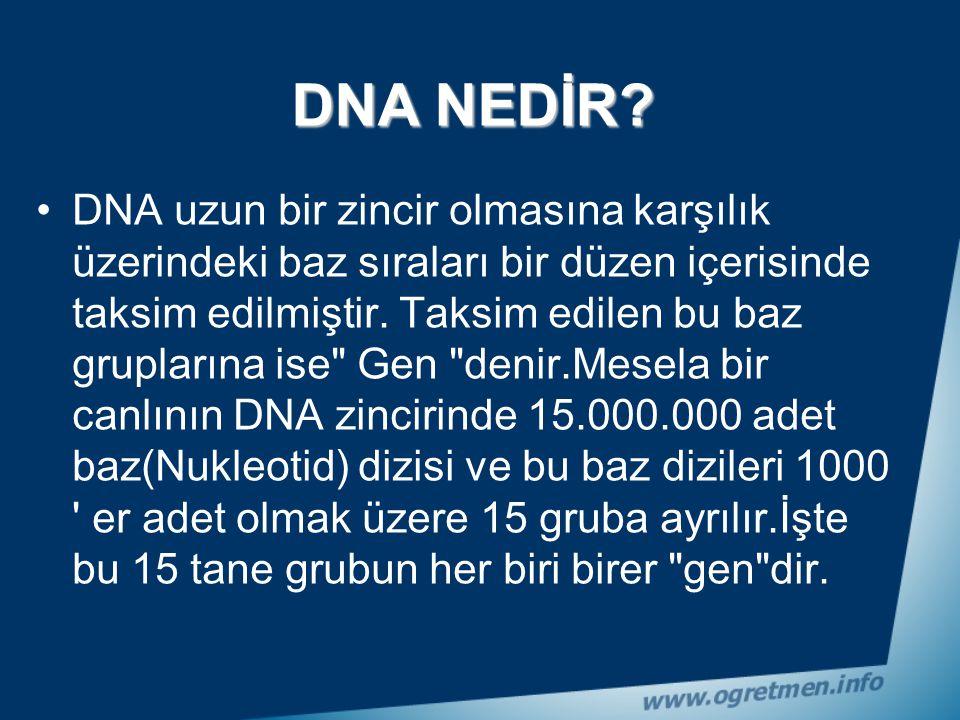 DNA NEDİR