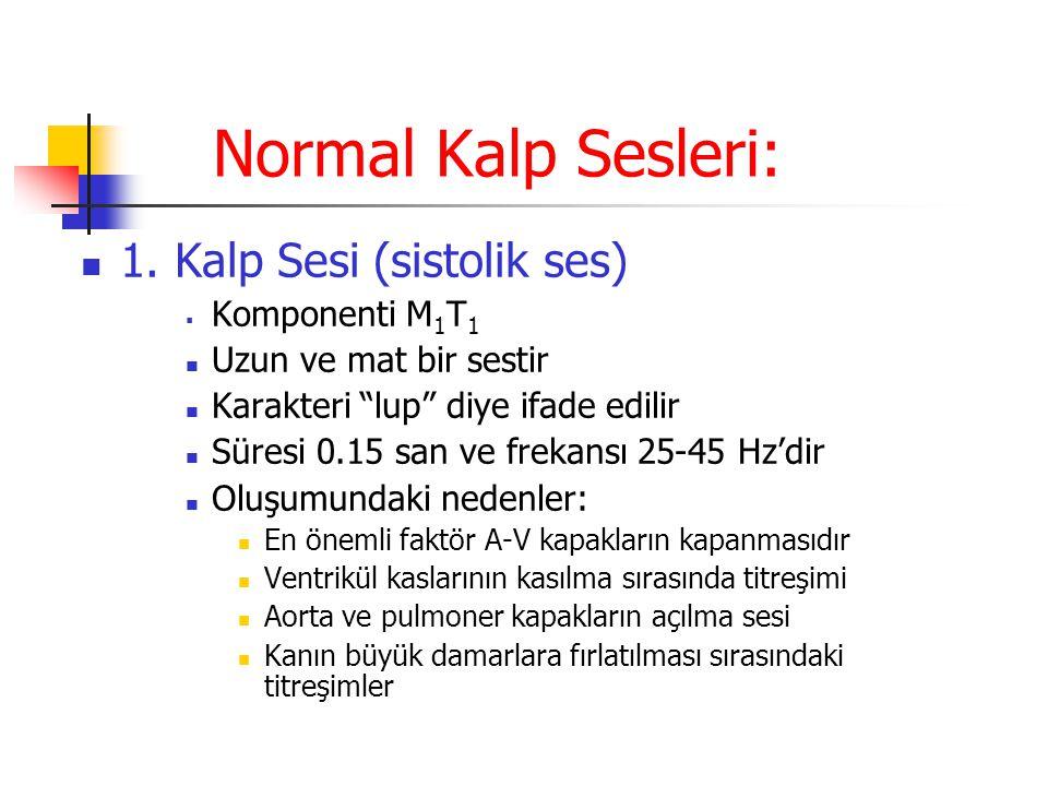 Normal Kalp Sesleri: 1. Kalp Sesi (sistolik ses) Komponenti M1T1
