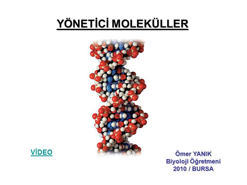 YÖNETİCİ MOLEKÜLLER VİDEO Ömer YANIK Biyoloji Öğretmeni 2010 / BURSA
