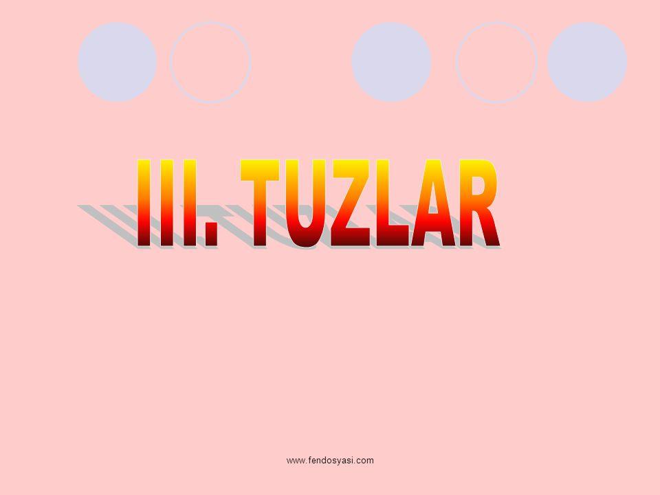 III. TUZLAR www.fendosyasi.com