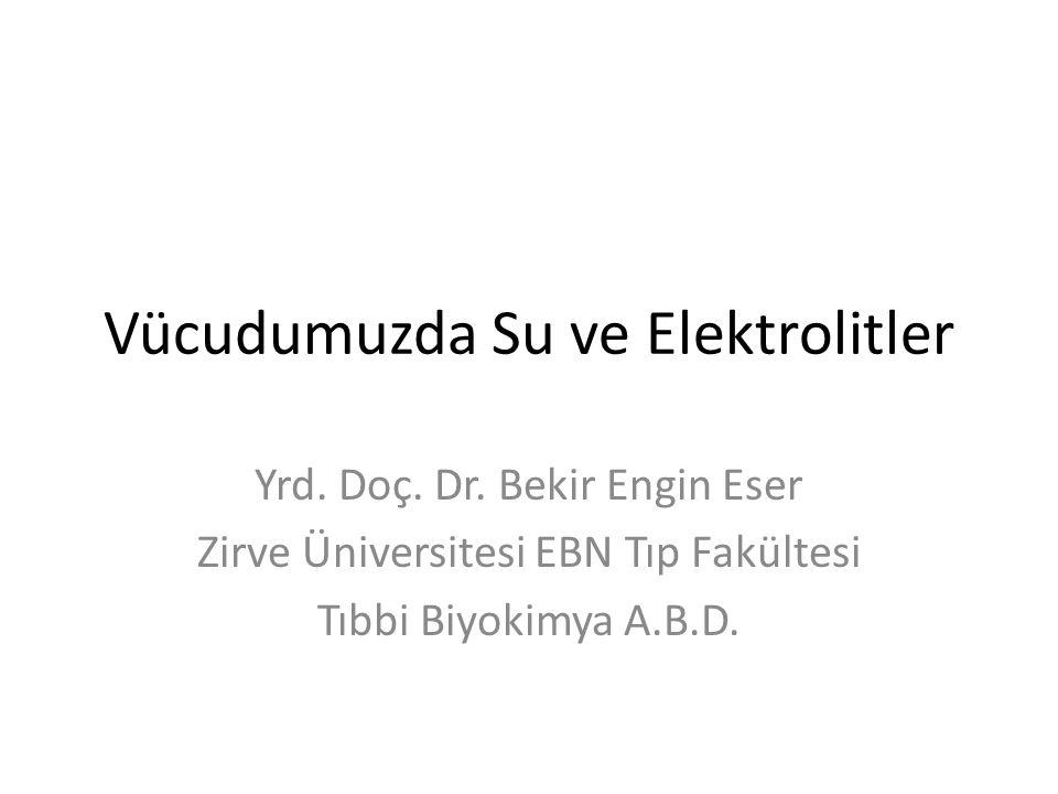Vücudumuzda Su ve Elektrolitler