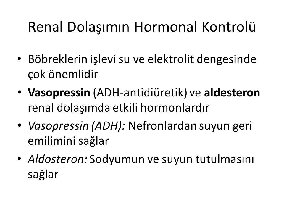 Renal Dolaşımın Hormonal Kontrolü