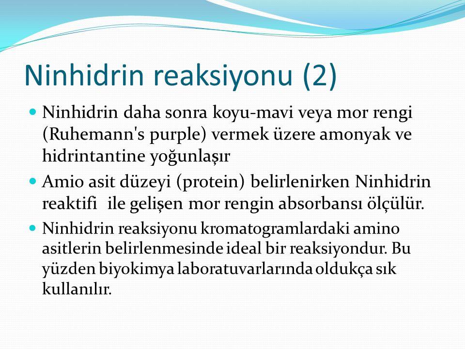 Ninhidrin reaksiyonu (2)