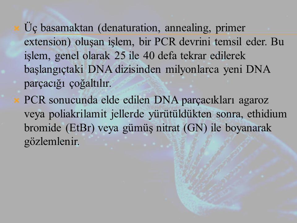 Üç basamaktan (denaturation, annealing, primer extension) oluşan işlem, bir PCR devrini temsil eder. Bu işlem, genel olarak 25 ile 40 defa tekrar edilerek başlangıçtaki DNA dizisinden milyonlarca yeni DNA parçacığı çoğaltılır.