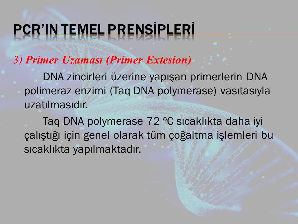 PCR'IN TEMEL PRENSİPLERİ