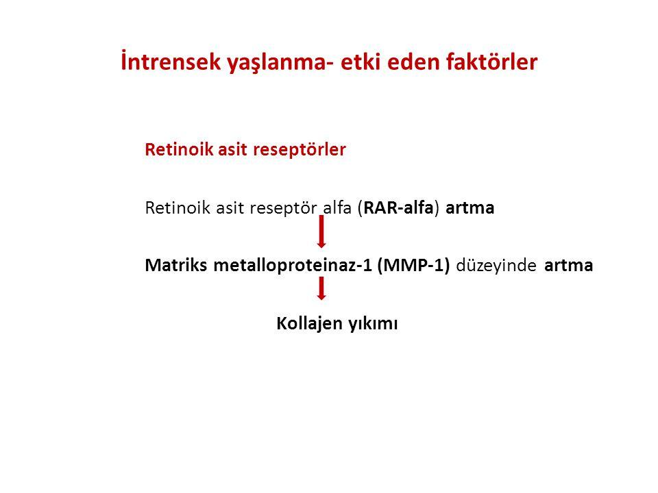 İntrensek yaşlanma- etki eden faktörler
