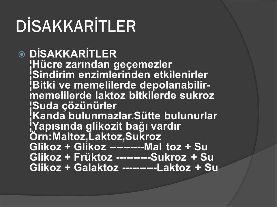 DİSAKKARİTLER