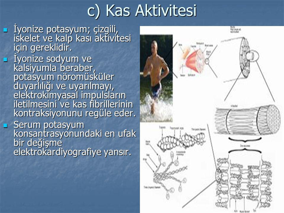 c) Kas Aktivitesi İyonize potasyum; çizgili, iskelet ve kalp kası aktivitesi için gereklidir.